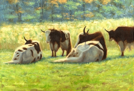 Lazy Afernoon, yaks, cows, oil painting